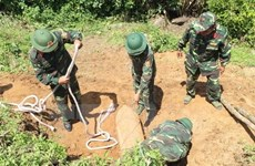 Unexploded steel-pellet bomb unearthed in Hai Duong province
