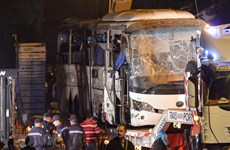 Deadly bomb attack in Egypt continues to be condemned