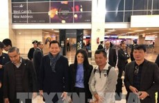 First nine Vietnamese victims of Egypt bomb attack go back home