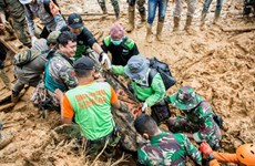 Philippines: Death toll from landslides, floods climbs to 85