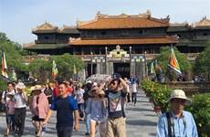 Tourist arrivals surge during 2019 New Year holidays