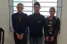Drug trafficking ring from Son La to Hanoi intercepted