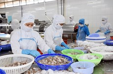 Southeastern provinces' economy performs well in 2018