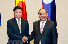 Vietnam, Laos look towards stronger comprehensive cooperation