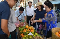 More than 1,000 safe agricultural models set up