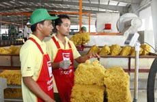 Rubber exports up in volume, down in value