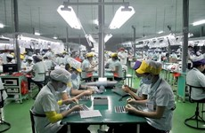 Vietnam to keep outperforming region: Fitch Solutions