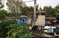 Storm Pabuk kills one, injures six