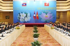 Vietnamese, Lao PMs co-chair meeting of inter-governmental committee