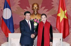 Vietnamese NA to closely cooperate with Lao counterpart: Chairwoman