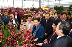 NA Chairwoman visits new-style rural communes in Hung Yen province