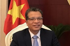 Vietnamese Ambassador meets Chinese media