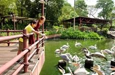 Environmentalists voice concern about Singapore mass eco-tourism project