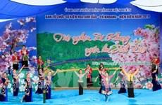 Dien Bien: Pa Khoang hosts second cherry blossom festival
