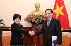 Vietnamese, Japanese foreign ministries seek stronger cooperation