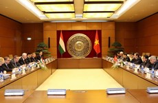 Vietnamese, Hungarian parliaments foster partnership