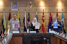 Malaysia considers applying curfew for young people
