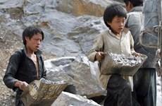 Vietnam still lacks legal framework to protect child labour
