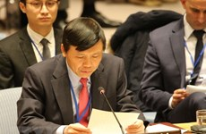 Vietnam calls for compliance to resolutions on Middle East issue
