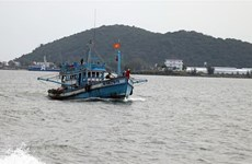 Nearly 55 bln VND for Quang Tri offshore fishing vessels