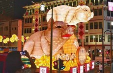 Singapore's Chinatown dresses up for Lunar New Year