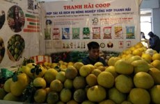 Local staples offered at Hanoi's spring fair 2019