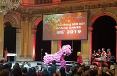 Vietnamese people in France gather for Tet celebration