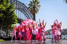 Sydney launches brightest celebrations to welcome in Lunar New Year 2019