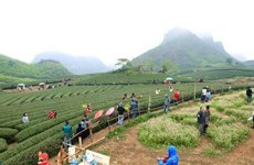 Planning scheme for Moc Chau national tourist site approved