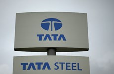 Chinese group buys 70 pct of Tata's Southeast Asian steel projects