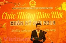Vietnamese expats in Czech Republic, Algeria celebrate Tet festival