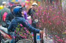 Disadvantaged people supported to enjoy Tet holiday