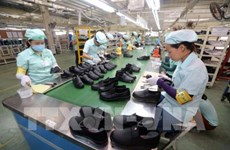 FDI firms in Vinh Phuc province recruit more workers