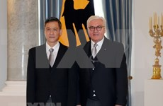 Vietnam wishes to enhance ties with Germany: Ambassador