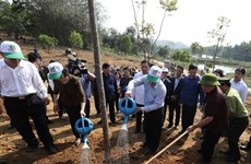 Party, State leader launches Tet tree planting festival in Yen Bai