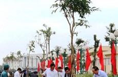 Tree-planting festival greens up localities