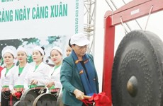 Top legislator launches tree planting festival in Hoa Binh