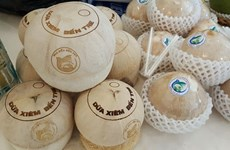 Geographical indication protection will enhance VN products: experts