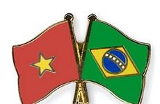Vietnam strengthens partnership with Brazil