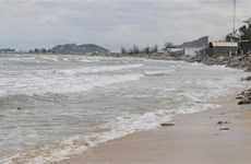 Vietnam learns from int'l experience in marine spatial planning