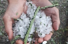 Hailstone, whirlwinds wreak havoc in northern provinces