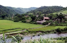 Nghe An strives to attract tourism investment