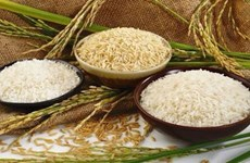 FAO supports Indonesia in organic rice production