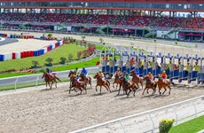 Hanoi authorities to facilitate deployment of horse racetrack project