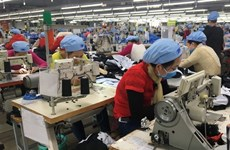 Garment, fishery firms plan production growth this year