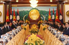 Vietnam - Laos joint statement stresses great friendship
