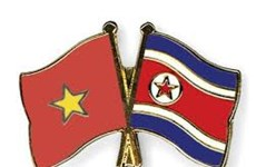 Cultural cooperation contributes to Vietnam-DPRK friendship