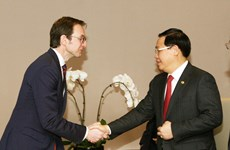 Vietnam backs OECD's multi-dimensional country review