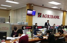 Nonghyup Financial Group seeks to assist Agribank's equitisation