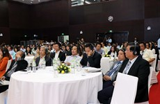 Da Nang city pushing ahead with investment attraction